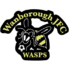 Wanborough JFC